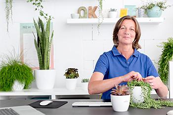 Sabine Adenau, Büroverschönerin