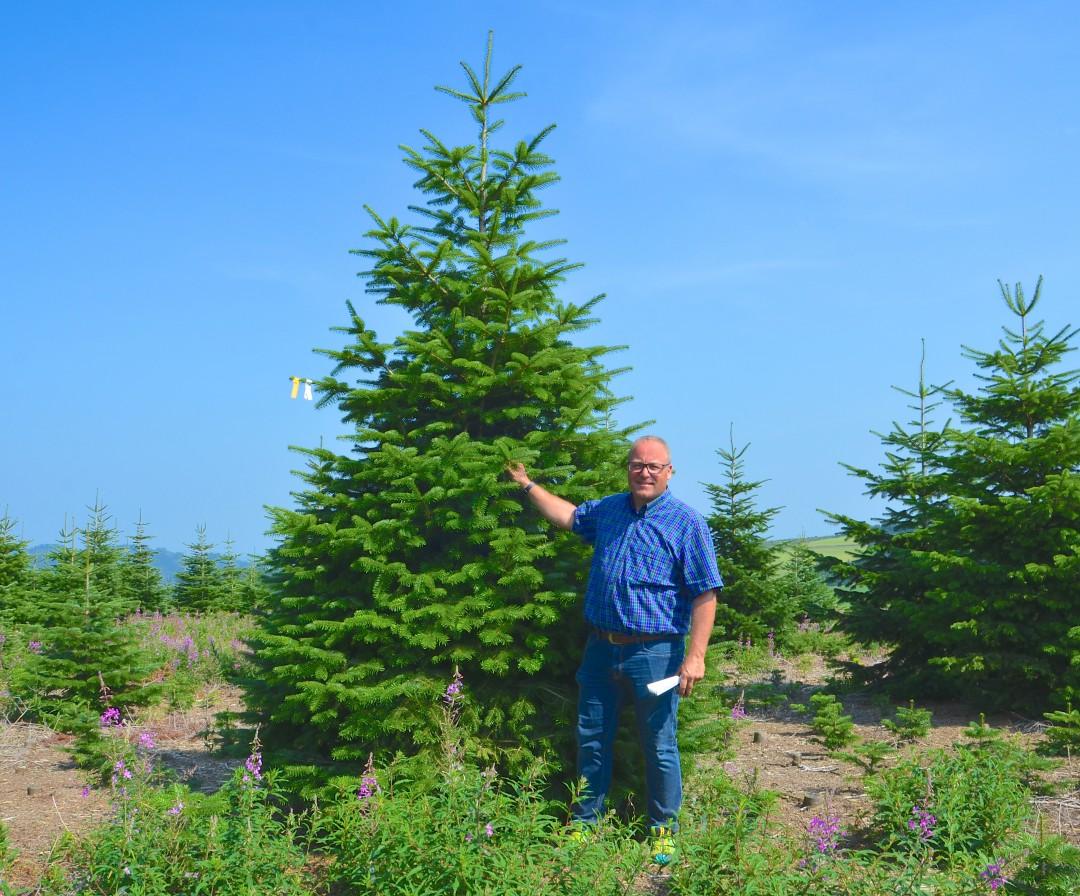 Herr Dinger hat sich bereits einen Baum ausgesucht. :D