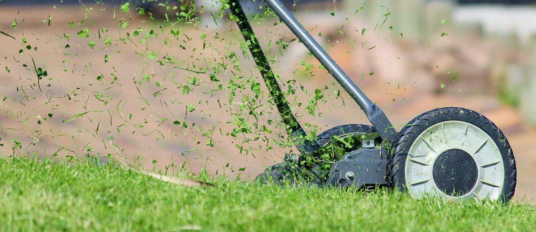 Mit einem Handrasenmäher wird der Rasen gemäht
