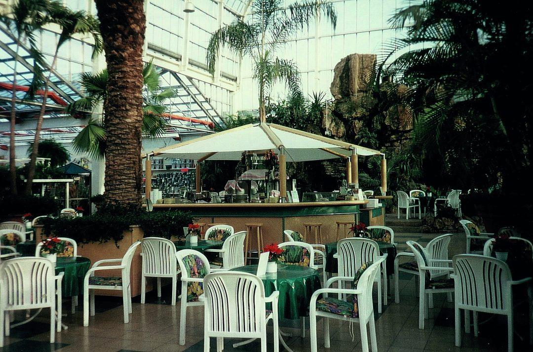 Café mit großer Palme in der Mitte