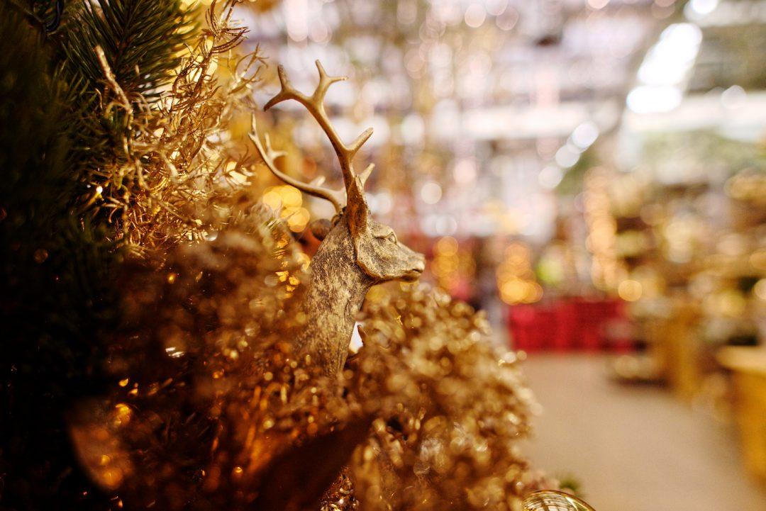 Kopf eines goldenen Hirsches inmitten von goldener Weihnachtsdeko.