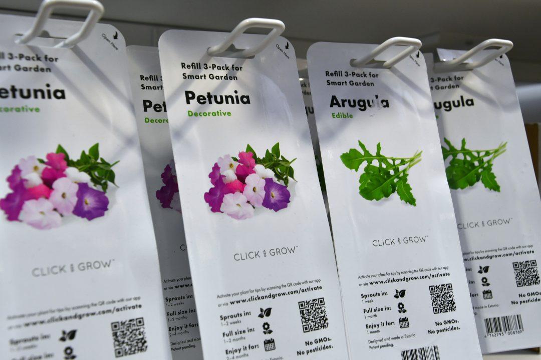 click and grow sorten Petunia und Rucola.