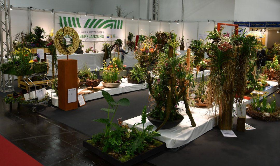 Ausstellung eines internationalen Pflanzwettbewerbs mit diversen Bepflanzungen auf weißen Podesten.