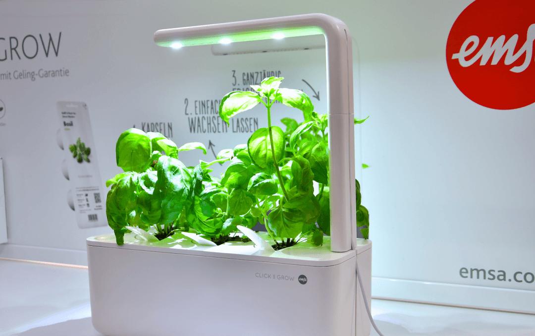 click and grow system der firma emsa mit Basilikumpflanzen unter drei hellen LED Leuchten.
