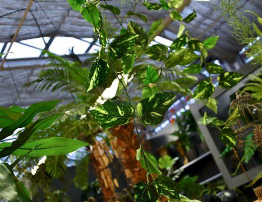 Blattwerk von künstlichen Pflanzen