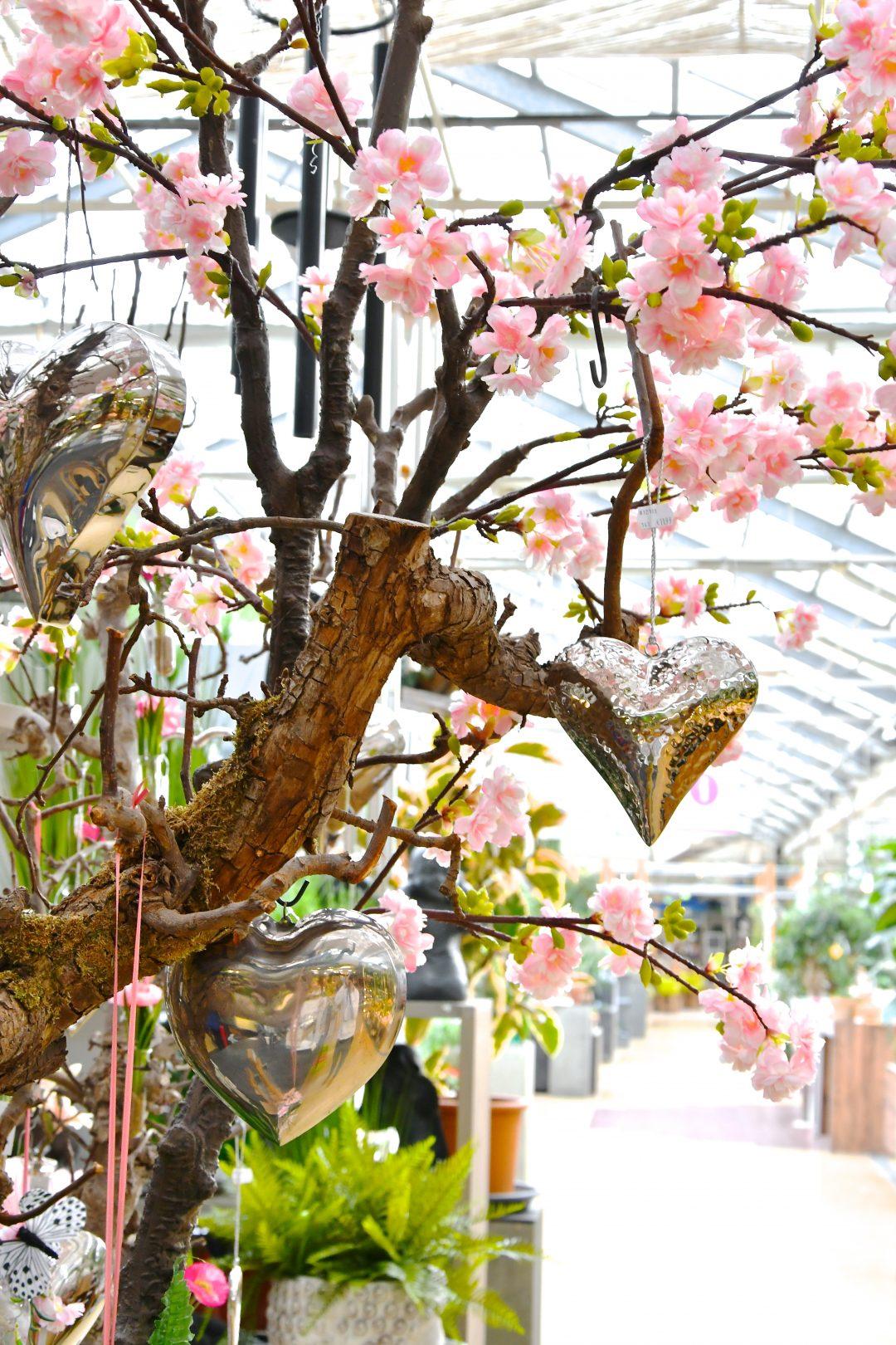 Auf diesem Bild sind die Äste eines Apfelbaumes zu sehen an dem dekorative silberne Herzen gehangen wurden. Ein künstlicher Ast mit Kirschblüten ist im Hintergrund zu sehen.