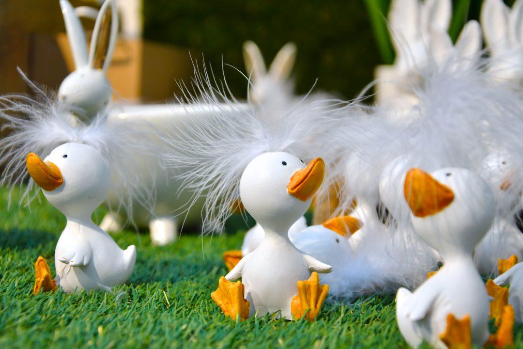 Auf diesem Bild sieht man viele weiße Entenfiguren mit orangenen Schnäbeln und Füßen sowie einer weißen Feder als Haarschmuck. Sie sitzen auf einer grünen Wiese. Im Hintergrund erkennt man weitere österliche Dekoelemente.