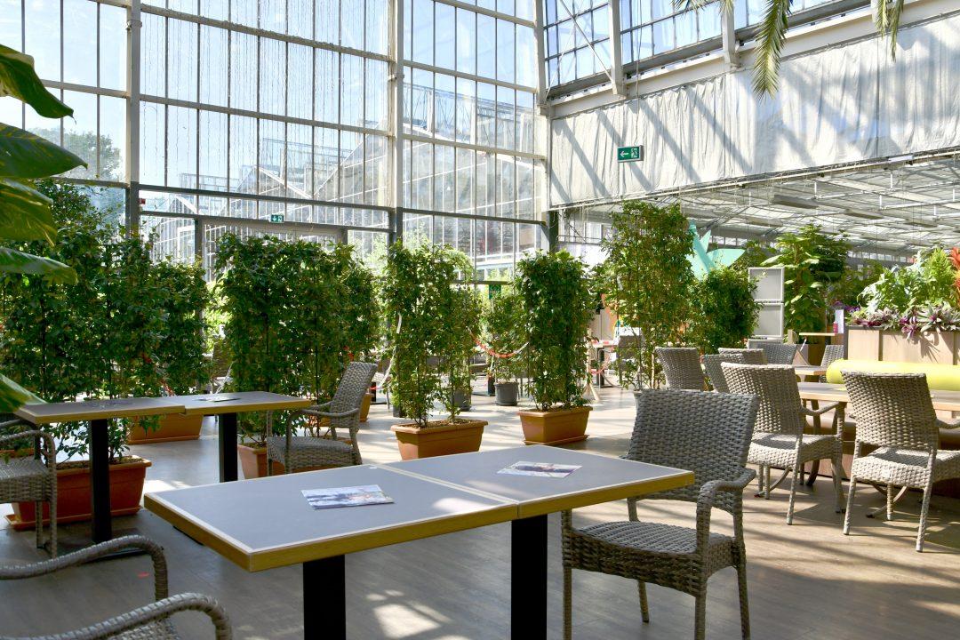 Dinger's Palmencafé in Coronazeiten. Die Tische stehen auseinander damit ausreichend Abstand da ist, der Hauptgang ist mit Hecken abgetrennt.