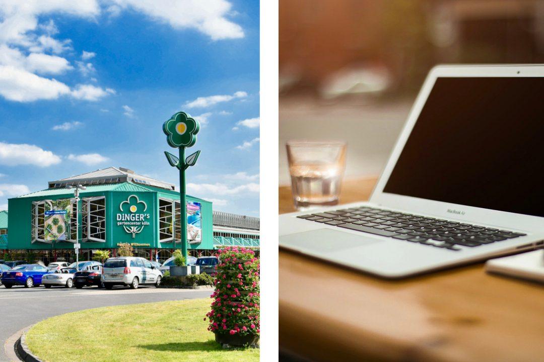 Dinger's Gartencenter Köln auf der linken Seite des Bildes und ein Laptop auf der rechten Seite des Bildes.