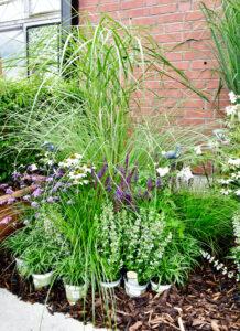 Gartenschaufläche